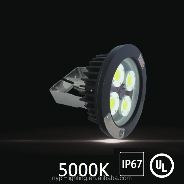 80W 5000K explosion-proof led light (Suspended)