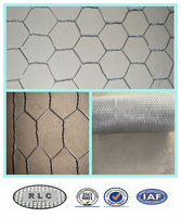 "galvanized 1/2"" inch chicken wire/ 1/2"" hexagonal wire mesh for fence and cage"