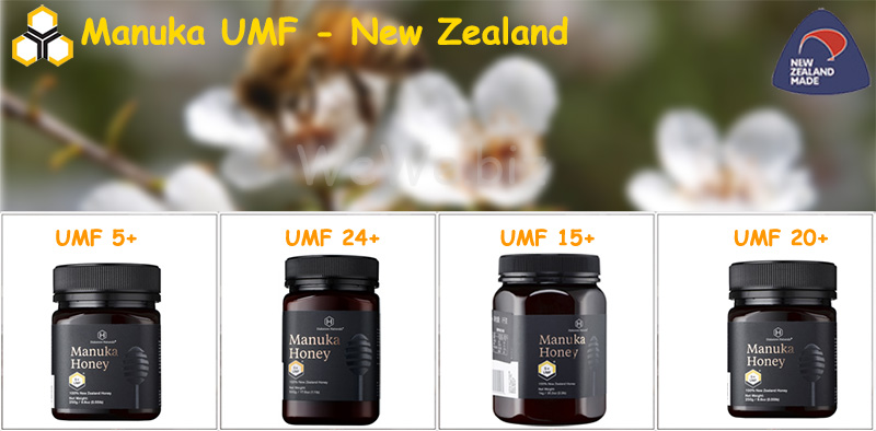 New Zealand Honey 500g Royal Honey Natural Honey (Manuka Blend) Factory Shipping