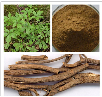Hot sale Eleuthero Extract benefits of Siberian Ginseng Extract O.8% Eleutherosides