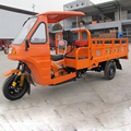 China 200CC gasoline shaft drive two seat adult tricycle with cabin