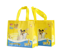 Two handles eco friendly PP woven bags