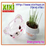 Animal shape growing grass head toys promotional item