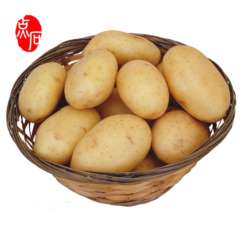 Fresh Russet Potato Importers In China