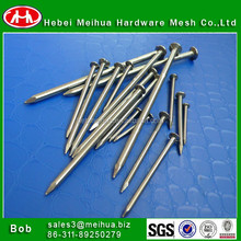 common nail/common wire nails with competitive price