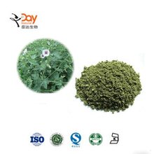 Herbal Cigarettes Althaea Officinalis Herb