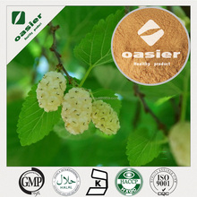 2015 new best Pure dried white mulberry /mulberry leaf extract/mulberry fruit