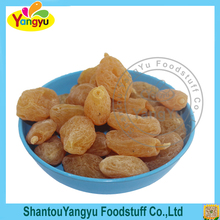 Tasted fruit sour candy healthy dried yellow betel nut