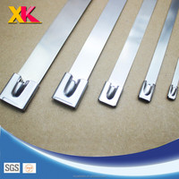 Widely Used Various Type Chemical Resistant fleje acero inoxidable Stainless Steel Strapping Band and Nylon Cable Tie