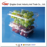 1 pound Transparent Disposable Fresh Grape Plastic Packing Box