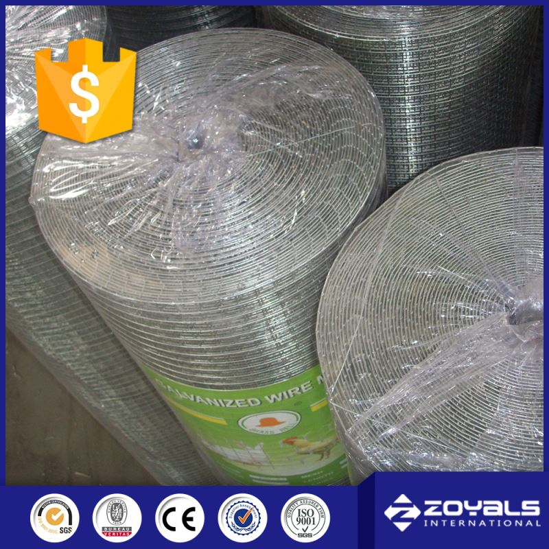 Low Price Rolled 316 Stainless Steel Welded Wire Mesh