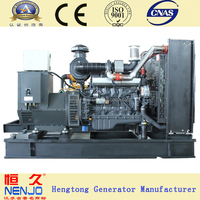 250kw 6 cylinders diesel engine power generator from China supplier