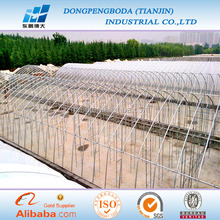 DPBD galvanized steel pipe for greenhouse frame