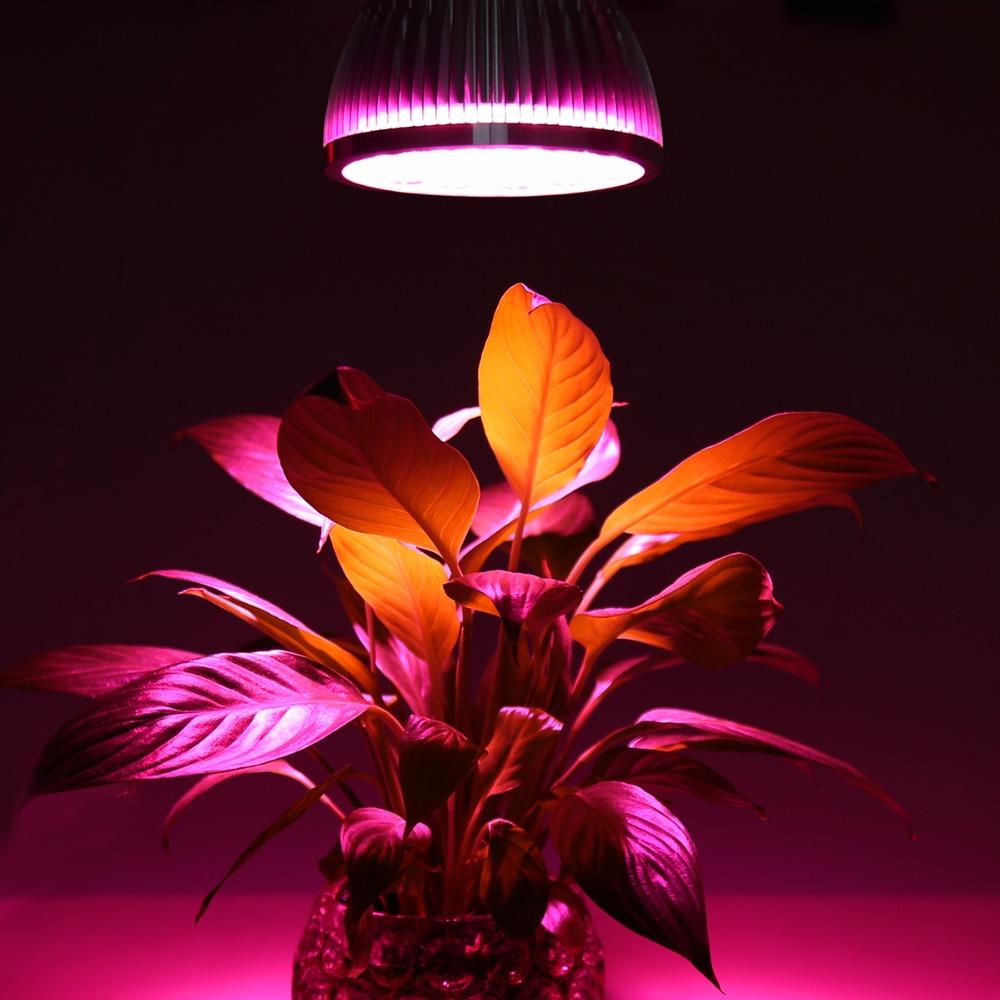 E27 plant grow led Indoor or Desktop Plants LED Grow Light Flexible Lamp LED Plant Growth Light 21W 54W AC85-265V Free shipping (6)