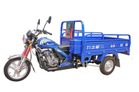 Hot Sale 175cc Wagon Loading Motor Tricycle for Cargo Use