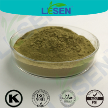 free sample green coffee bean extract powder/bulk powder green coffee bean extract