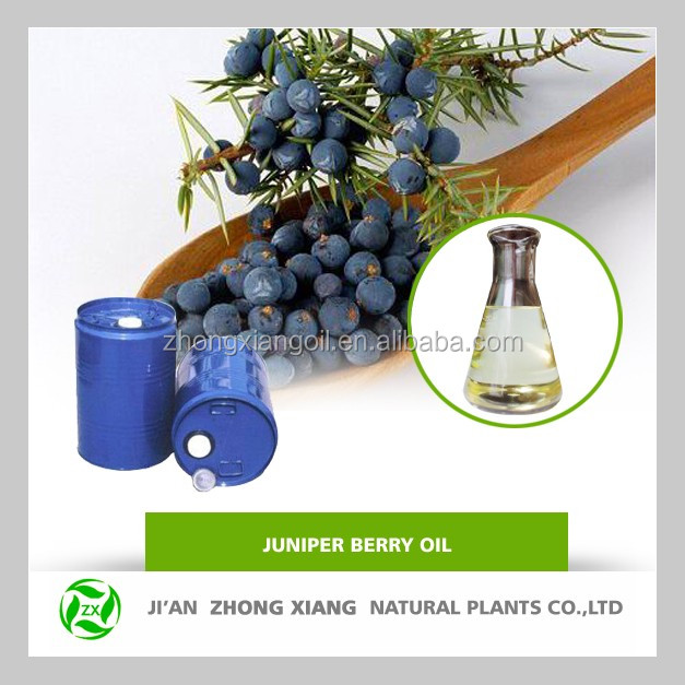 ZhongXiang Natural Juniper Berry Oil In Bulk Quantity