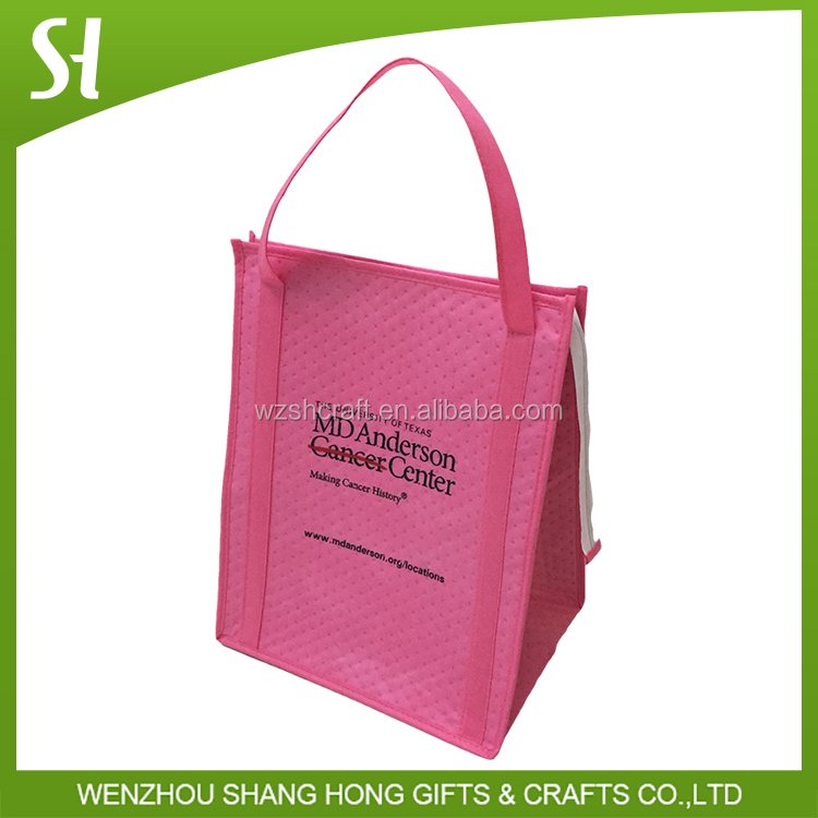 custom pink cute insulated clear lunch bag/handle type lunch bag kids/take away packaging with zipper