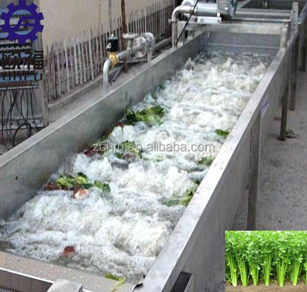 CE Approved vegetable air bubble leaf vegetable lettuce cabbage spinach celery vegetable washing machine, cleaning