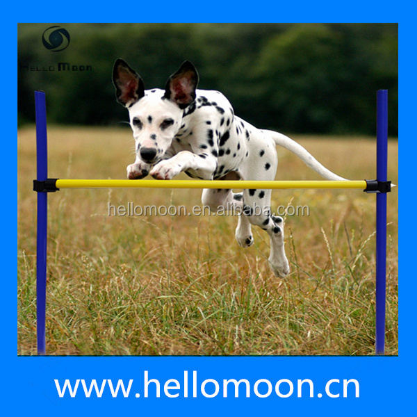 Hot Sale Cheap Dog Training Agility Equipment For Dogs