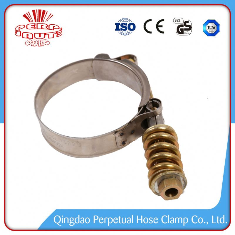 Spring Loaded Hose Clamps Boating T Bolt Stainless Steel