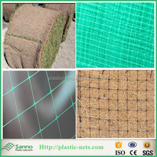 Polypropylene Plastic Bop Sod Grass Growing Netting on Slope for Erosion Control