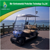 2 seaters electric tourist vehicle golf cart CE approved