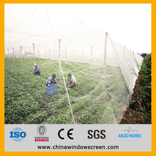 U.A.E. standard 14 x 42 meters HDPE insect net rolls for greenhouse anti insect uv protection