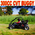 Two Seats 300cc Offroad Buggy