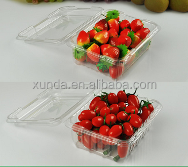 Disposable transparent pack plastic fruit tray blister packaging boxes food container