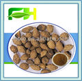 100% Natural Sharpleaf Galangal Fruit Extract