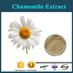 Factory Supply 100% Pure Natural Chamomile Extract