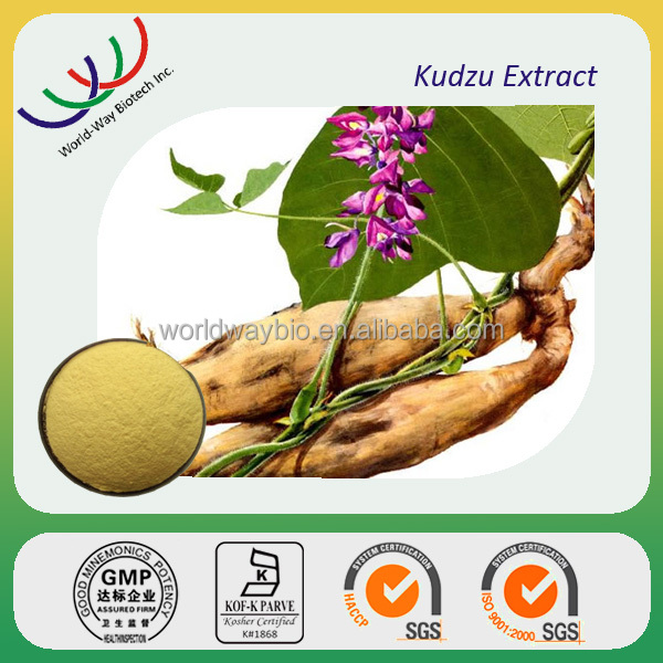 free sample HACCP KOSHER FDA manufacturer natural herbal extract kudzu flavone puerarin pueraria mirifica extract