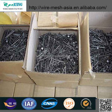 Selling cheap price Common Nail /Best price common wire nail factory /High Quality and reasonable price Common Nails