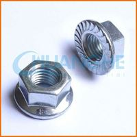 High quality and popular hex socket head nut