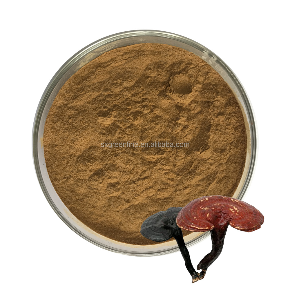 Factory supply Reishi mushroom dual extract powder polysaccharide extraction