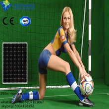 1 KW Solar Panel With 4PCS High Efficiency 250W PV Solar Modules