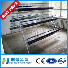 galvanized welded wire mesh panels chicken cage