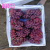 2017 new corp large quantity fresh grape