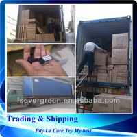 sea freight forwarder TUNIS Tunisa ,logistic in Guangzhou