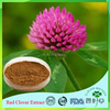 Bulk supply Hot sales Free sample plant extract Red clover extract