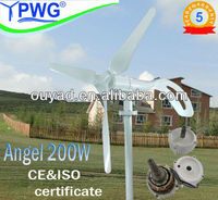 200w 24v/12v decorative wind turbine for sale