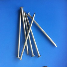 Low price top quality common iron nail for construction