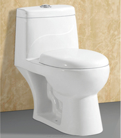Floor Mounted Installation Type Siphonic Toilets