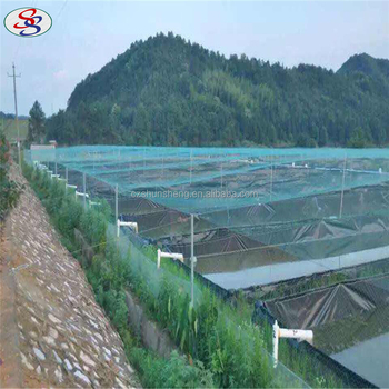 plant support bird net trap fencing