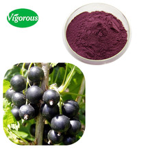 100% pure natural Black Currant Extract / Black Currant berry powder