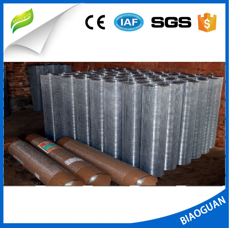Plastic Insect Screening//Insect Netting//Window Screen hot sale