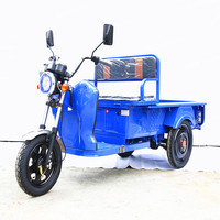 2017 new three wheel 500w 48v cheap tricycle electric cargo bike