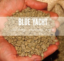 Bulk Raw Coffee Beans Arabica Coffee Bean with High Screen