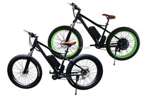 electric bike with 8fun 500w central drive motor moutain snow fat bike